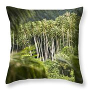 Coconut Palm Trees Throw Pillow