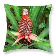 Coconut Plant Throw Pillow