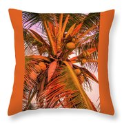 Coconut Sunset Throw Pillow