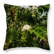 Coffee Cherries Throw Pillow