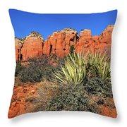 Coffeepot And Cactus Az Throw Pillow