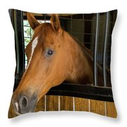 Col Snickers Throw Pillow