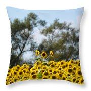 Colby Farms Sunflower Field Newbury Ma Standing Tall Throw Pillow