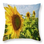 Colby Farms Sunflower Field Side Throw Pillow