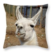 Colchagua Valley Lama Throw Pillow