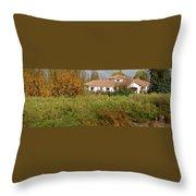 Colchagua Valley Villa  Throw Pillow
