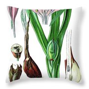 Colchicum Autumnale, Commonly Known As Autumn Crocus, Meadow Saf Throw Pillow