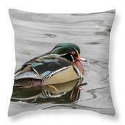 Cold Throw Pillow