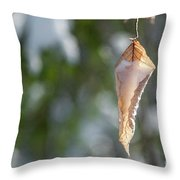 Cold Beauty Throw Pillow