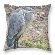 Cold Blue Heron Throw Pillow