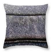 Cold Car Throw Pillow