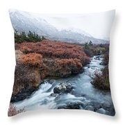 Cold Creek In Autumn Throw Pillow
