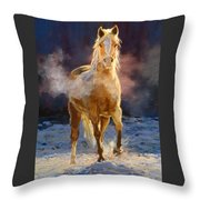 Cold Day For A Warm Welcome Throw Pillow