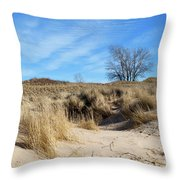 Cold Dune Day Throw Pillow