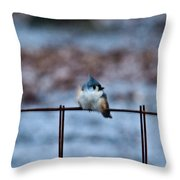 Cold Fledgling Throw Pillow