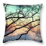 Cold Hearted Bliss Throw Pillow