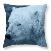 Cold Morning Throw Pillow