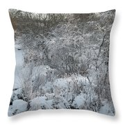 Cold Morning Throw Pillow