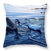 Cold Morning Swim 2 Throw Pillow