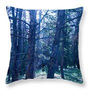 Cold Mountain Light Throw Pillow
