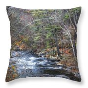 Cold Mountain Stream Throw Pillow