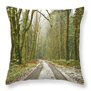 Cold Paths Throw Pillow