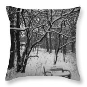 Cold Seat Throw Pillow