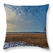 Cold Serenity Throw Pillow by Julis Simo