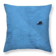 Cold Shoe Throw Pillow