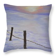 Cold Sience Throw Pillow