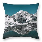 Cold Skies Throw Pillow