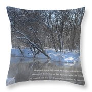 Cold-snow Throw Pillow