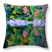 Cold Spring Harbor Reflections Throw Pillow