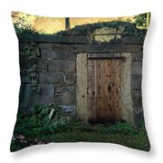 Cold Storage Crypt Throw Pillow