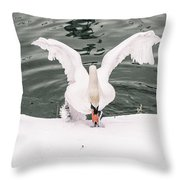 Cold Water Throw Pillow