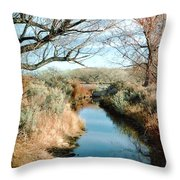 Cold Western Scene Throw Pillow