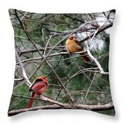 Cold Winter Day Throw Pillow