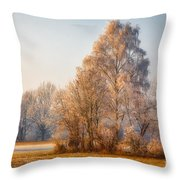 Cold Winter Evening In The Valley Throw Pillow