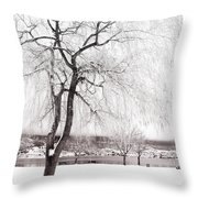 Coldness Throw Pillow
