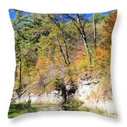 Coldwater Trout Stream Throw Pillow