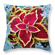 Coleus And Dusty Miller Throw Pillow