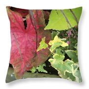 Coleus And Ivy Throw Pillow