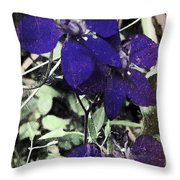 Collage By Mother Nature Throw Pillow