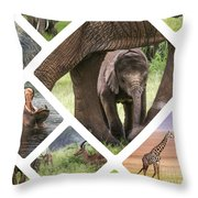 Collage Of Animals From Tanzania Throw Pillow
