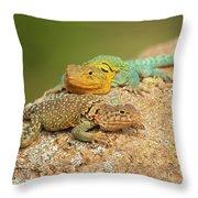 Collared Lizards Throw Pillow