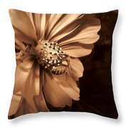 Collecting In Sepia Throw Pillow
