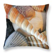 Collection Of Shells Throw Pillow