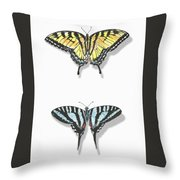 Collection Of Two Butterflies Throw Pillow