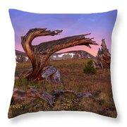 Coloful High Mountain Splendor Throw Pillow
