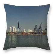 Colombia017 Throw Pillow